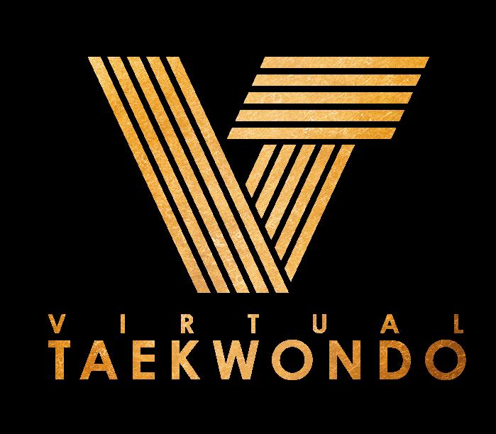 Virtual Taekwondo Logo